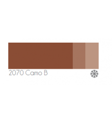 Camo B