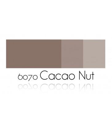 Cacao Nut